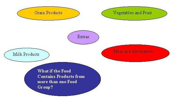FoodGroupsWeb